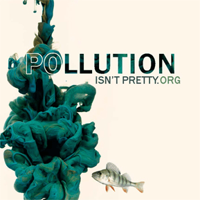 Pollution Isn't Pretty